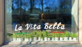 Владение образа жизни женщины в мобильном телефоне рук и сделать selfie в весне отражения окна силуэта vitrines кафа в прогулке i стоковые изображения rf