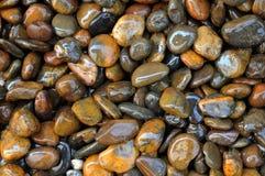 Влажная каменная текстура Стоковая Фотография