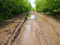 Влажная тинная проселочная дорога, проселочная дорога a с колейностями и лужицы Стоковое Фото
