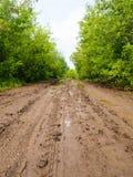 Влажная тинная проселочная дорога, проселочная дорога a с колейностями и лужицы Стоковые Фото