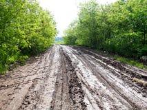 Влажная тинная проселочная дорога, проселочная дорога a с колейностями и лужицы Стоковые Изображения