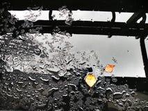 Влажное черное стекло с 2 листьями Стоковое Фото