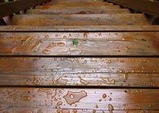 Влажные внешние шаги Стоковые Изображения RF