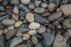 Влажный камешек на предпосылке текстуры картины конспекта пляжа стоковое изображение rf