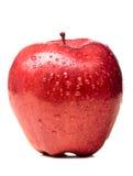 Влажный красный цвет - очень вкусный яблоко Стоковое Фото
