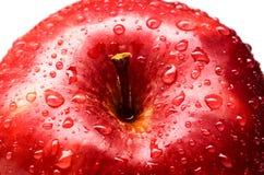 Влажный красный цвет - очень вкусный яблоко Стоковые Изображения RF