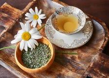 вливания horsetail фокуса equisetum чашки arvense чай стеклянного травяного naturopathy селективный Стоковые Фото