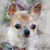 Влияние акварели прикладной к портрету фотоснимка  иллюстрация штока