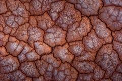 Влияния глобального потепления на мире стоковое фото rf