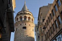 Влюбленность в Ä°stanbul с цветами стоковые фотографии rf