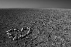 Влюбленность в пустыне Стоковые Изображения RF