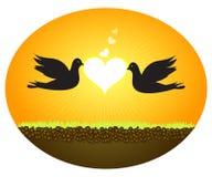 влюбленность голубей иллюстрация штока