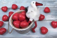 Влюбленность дня валентинок ведра красного аиста сердец деревянная празднует совместно навсегда сюрприз годовщины романтичный Стоковая Фотография RF