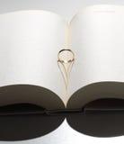 влюбленность книги Стоковые Фото