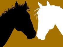 влюбленность лошади Стоковые Изображения RF