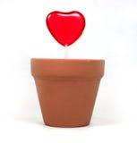 влюбленность одно сердца Стоковое Фото