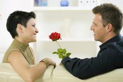 влюбленность пар подняла стоковые изображения