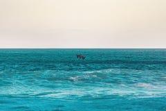 влюбленность пляжа i Стоковое Фото