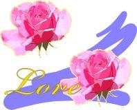 влюбленность подняла Стоковое Изображение