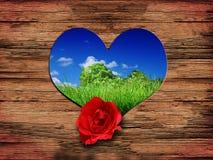 влюбленность предпосылки Стоковые Фото
