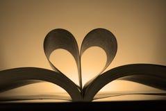 влюбленность прочитанная к Стоковые Фотографии RF