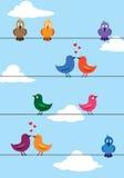влюбленность птиц Стоковое Изображение RF