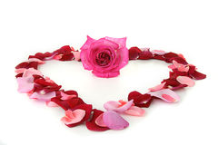 влюбленность сердца Стоковое Изображение