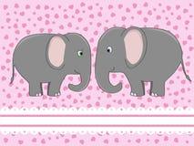 влюбленность слона Стоковая Фотография RF