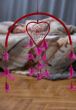 влюбленность сновидений стоковые изображения rf