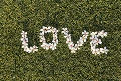 ВЛЮБЛЕННОСТЬ слова сделанная из цветков миндального дерева Плоское положение Concep влюбленности Стоковые Изображения