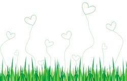 влюбленность экологичности Стоковая Фотография RF