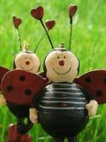 влюбленность 3 ladybugs Стоковая Фотография RF