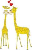 влюбленность giraffes бесплатная иллюстрация