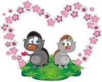 влюбленность hedgehog Стоковое Изображение
