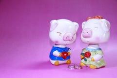 влюбленность piggy Стоковое Изображение