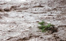 внезапное наводнение Стоковые Фото