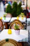 Внешнее кафе на солнечный весенний день с естественными цветками в баке Стоковая Фотография
