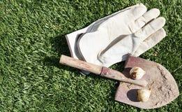 Внешней искусственной предпосылка зеленой травы текстурированная дерновиной Стоковая Фотография RF