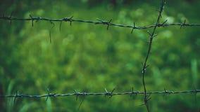 Внешней предпосылка колючей проволоки запачканная загородкой стоковое изображение