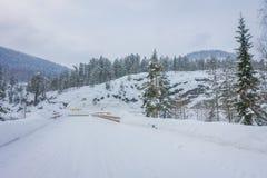 Внешний взгляд снега и льда дороги зимы боковой линии в лесе Норвегии Стоковые Фотографии RF