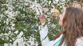 Внешний портрет красивой женщины в белой куртке среди белого дерева цветения сток-видео