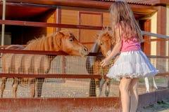 Внешний портрет молодой усмехаясь лошади девушки ребенка подавая на fa Стоковое Изображение