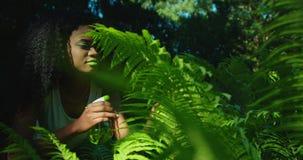 Внешний портрет очаровательной афро-американской женщины с яркое ым-зелен составляет смотреть после папоротника Детеныши видеоматериал