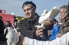Внешний рынок птицы в Стамбуле Стоковая Фотография