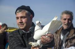 Внешний рынок птицы в Стамбуле Стоковая Фотография RF