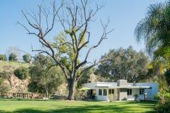 Внешний сад роскошного дома Стоковое Изображение RF