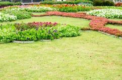 Внешний цветочный сад Стоковое Изображение