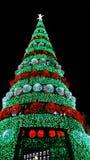 Внешняя гигантская рождественская елка Стоковая Фотография RF