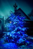 Внешняя рождественская елка с голубыми светами Стоковое фото RF