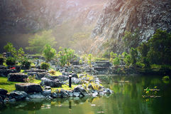 Вне в одичалом и обозревать река с отражениями дерева Стоковое фото RF